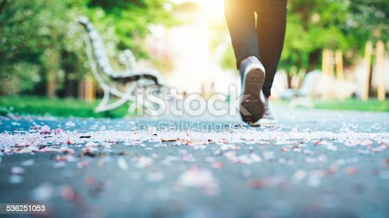 Woman walking along the footpath in the direction of a sun. Close-up of feet in a spring park with cherry petals lying on the ground. City park in Prague.