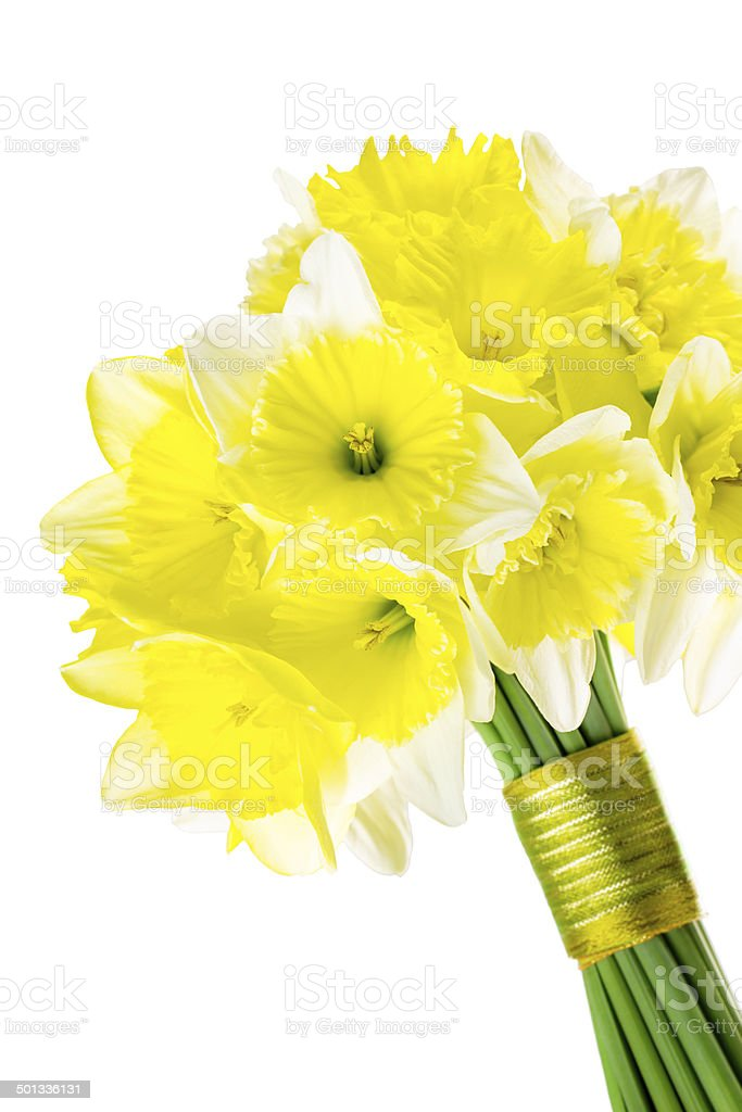 Spring wedding bouquet of daffodils stock photo