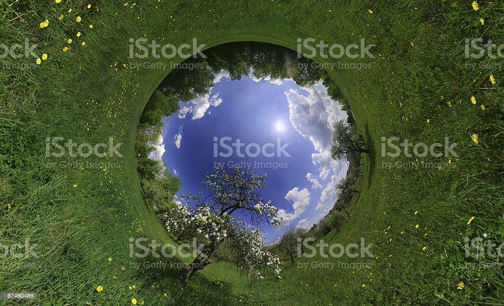 Spring world royalty-free stock photo