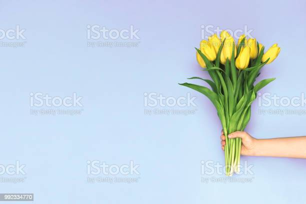 Spring yellow tulips woman holding a bouquet on purple background picture id992334770?b=1&k=6&m=992334770&s=612x612&h=8ew2oizbn2 fhhcfs6w49quwtocag fx0qztvypc5om=