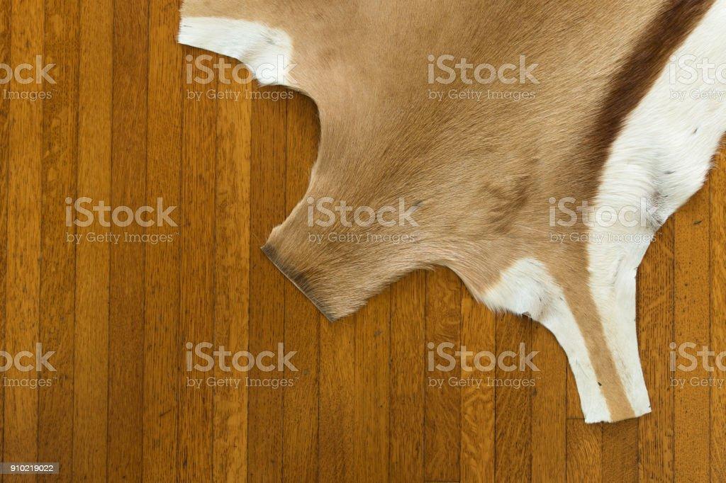 Springbok hide rug on hardwood floor stock photo