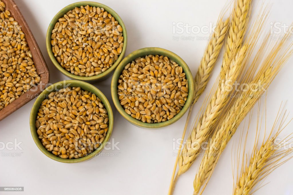 Springs and grains  of wheat on a white background. Close up. Top view zbiór zdjęć royalty-free
