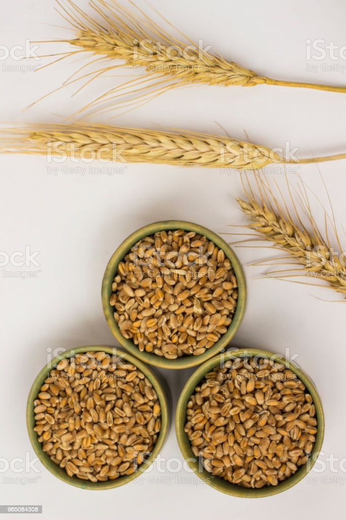 Springs and grains  of wheat on a white background. Close up. Top view royalty-free stock photo