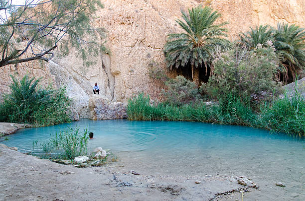 Springs de Chebika - foto de stock