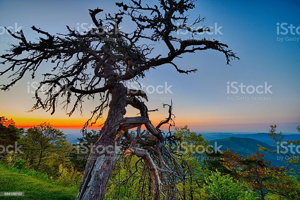 Springtime at Scenic Blue Ridge Parkway Appalachians Smoky Mount stock photo