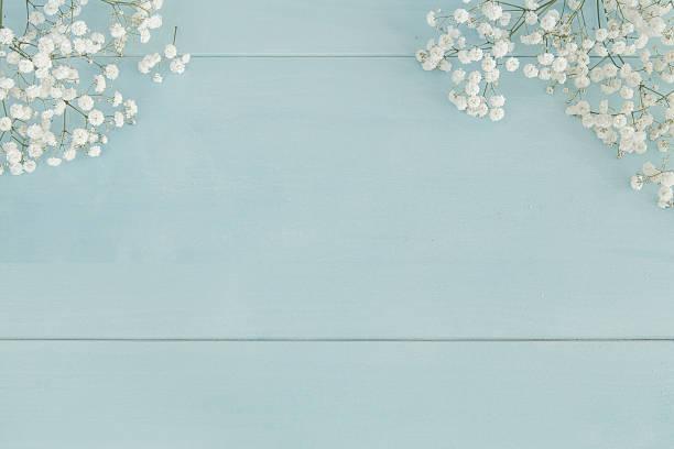 springtime background - flower bouquet blue and white bildbanksfoton och bilder