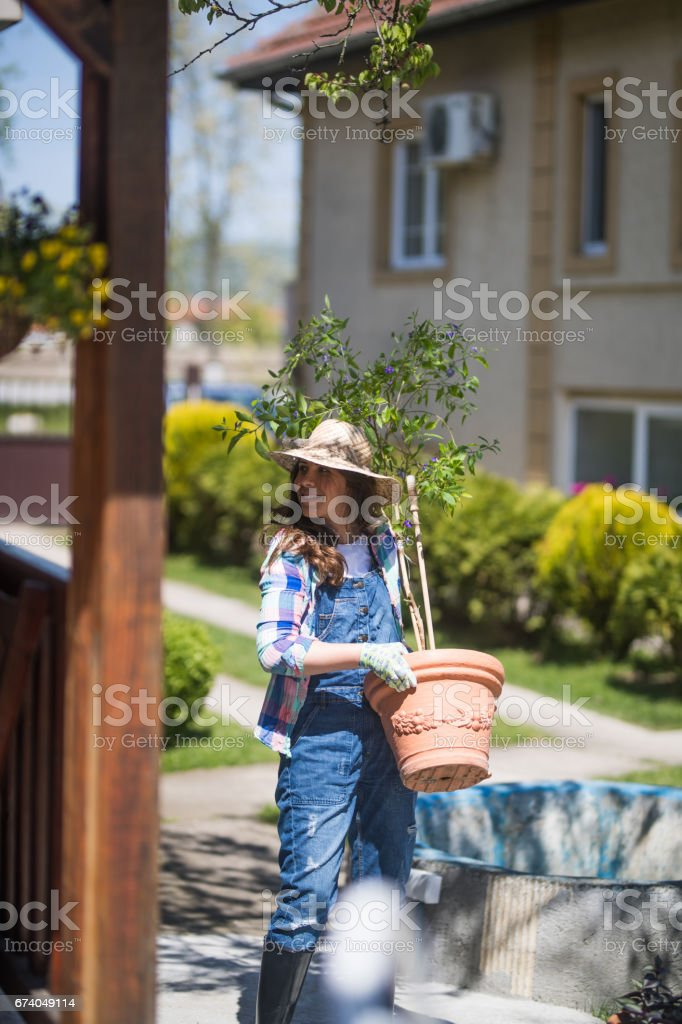 Springtime botanist stock photo