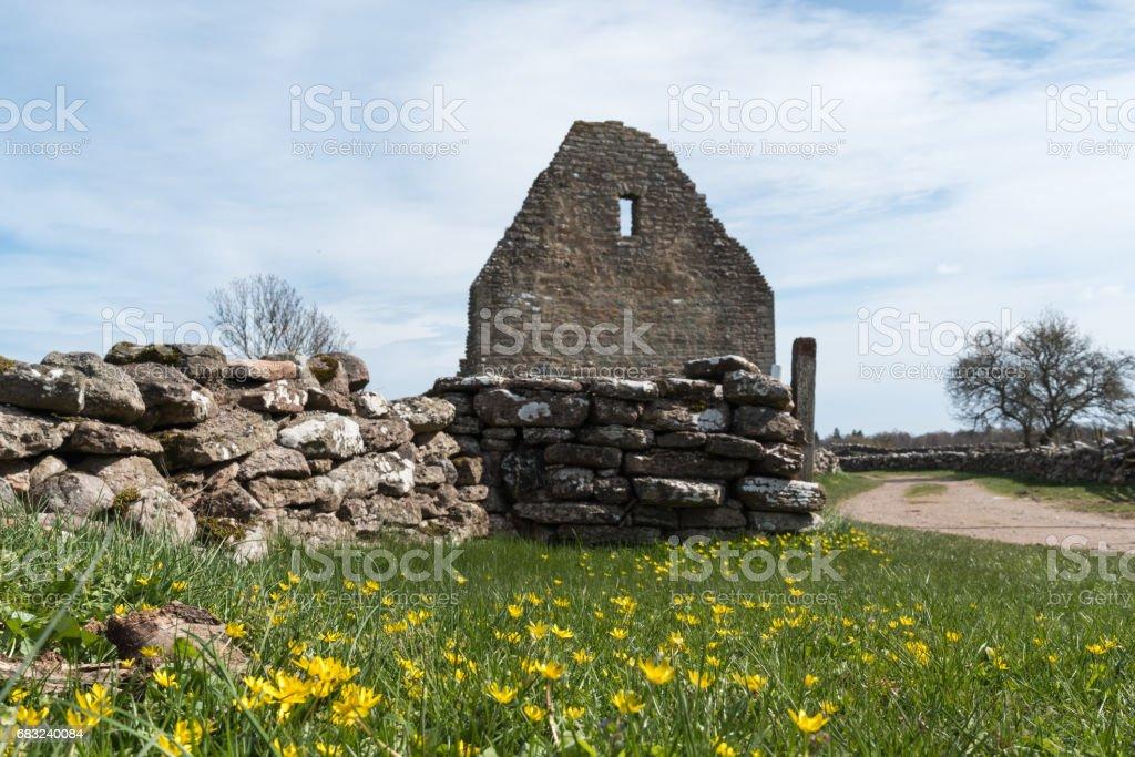 舊廢墟的春天 免版稅 stock photo