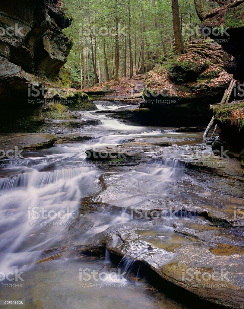 Springtime Cascade stock photo