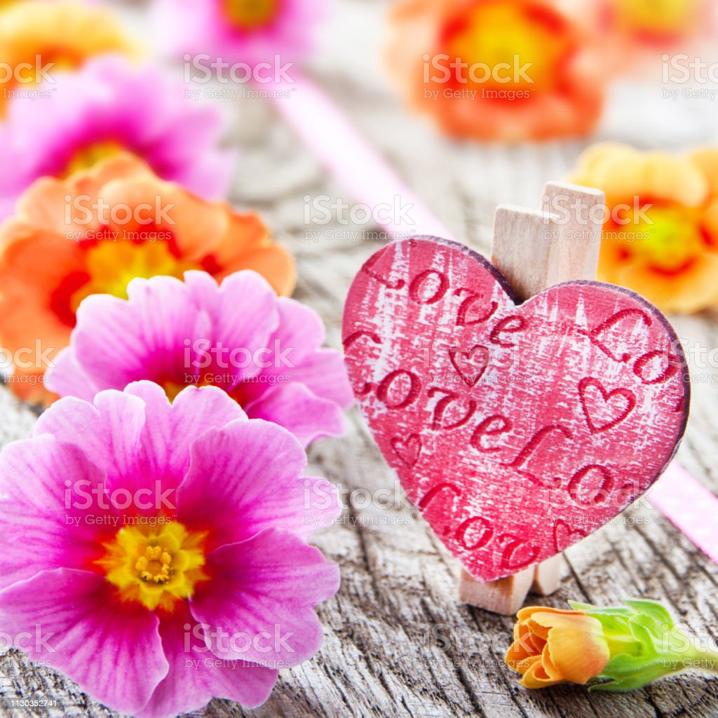 Springtime flowers and love heart close up