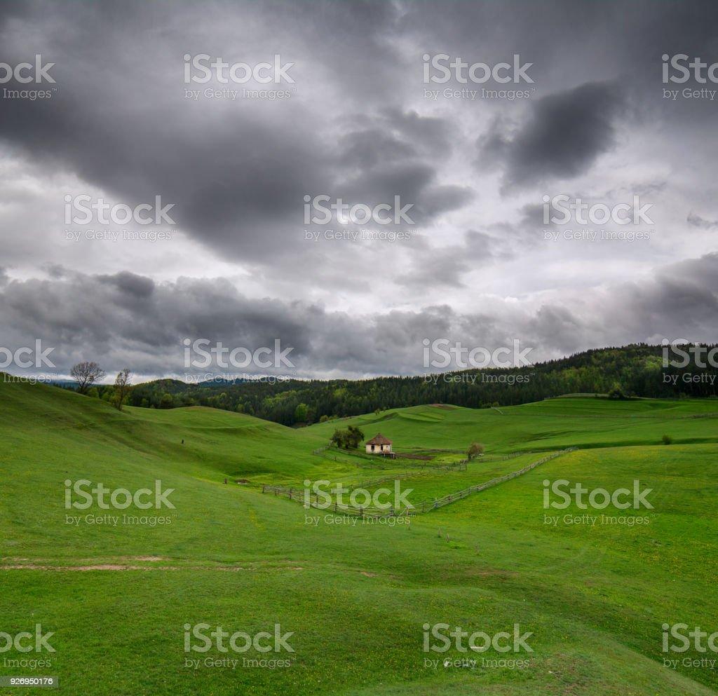Springtime green grass field with overcast sky stock photo