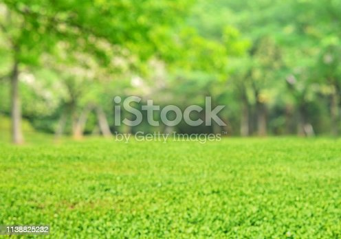 1067054470istockphoto Springtime green nature blur abstract background 1138825232