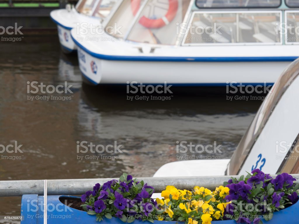 springtime in amsterdam royalty-free stock photo