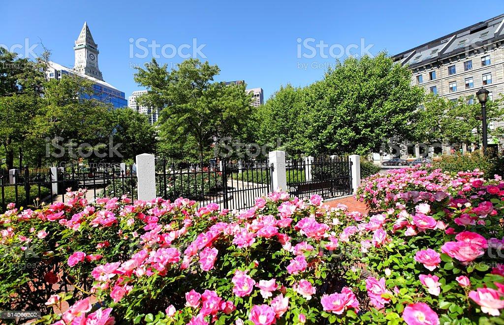 Springtime in Boston stock photo