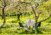 istock Springtime in home blooming apple garden concept. Table set with tea cups, boho reuse jar vase with forget me not flowers( Myosotis). Stack of books on white tablecloth. 1300009467