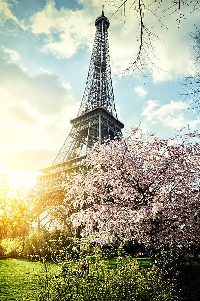 Springtime in Paris. Eiffel tower stock photo