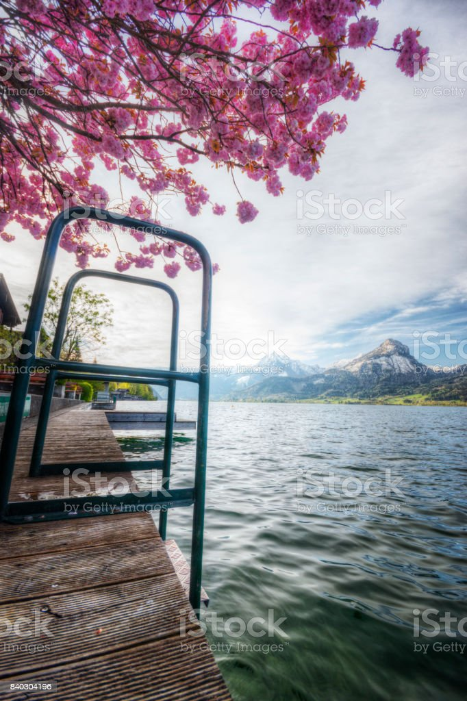 Springtime in the Alps stock photo