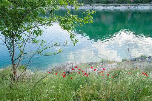 Springtime landscape in Lagunas de Ruidera Natural Parkland, Spain