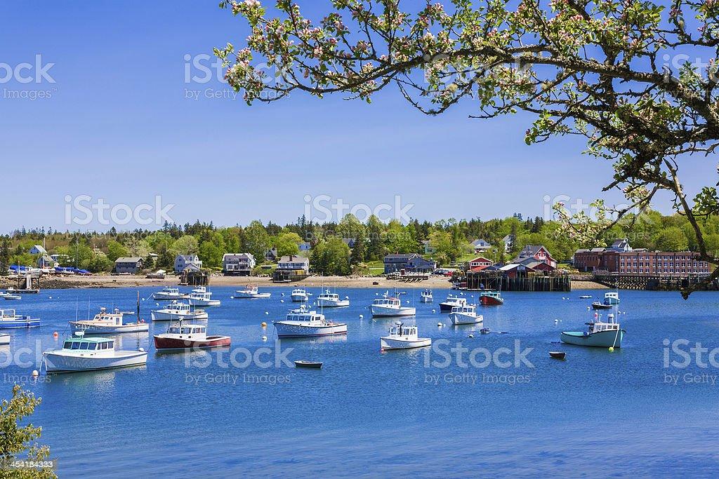 springtime Maine fishing village, harbor and boats  Mount Desert Island stock photo