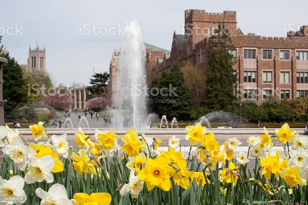 springtime on campus stock photo