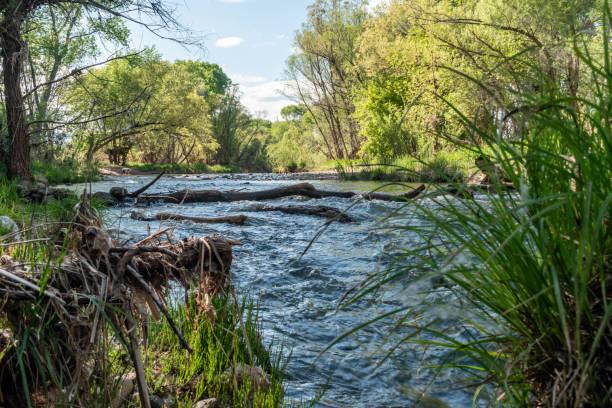 Springtime on the river stock photo