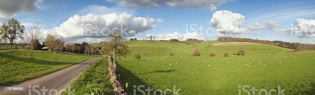Springtime rural farmland panoramic scenic. royalty-free stock photo