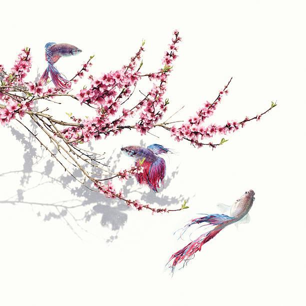 Springtime scene stock photo