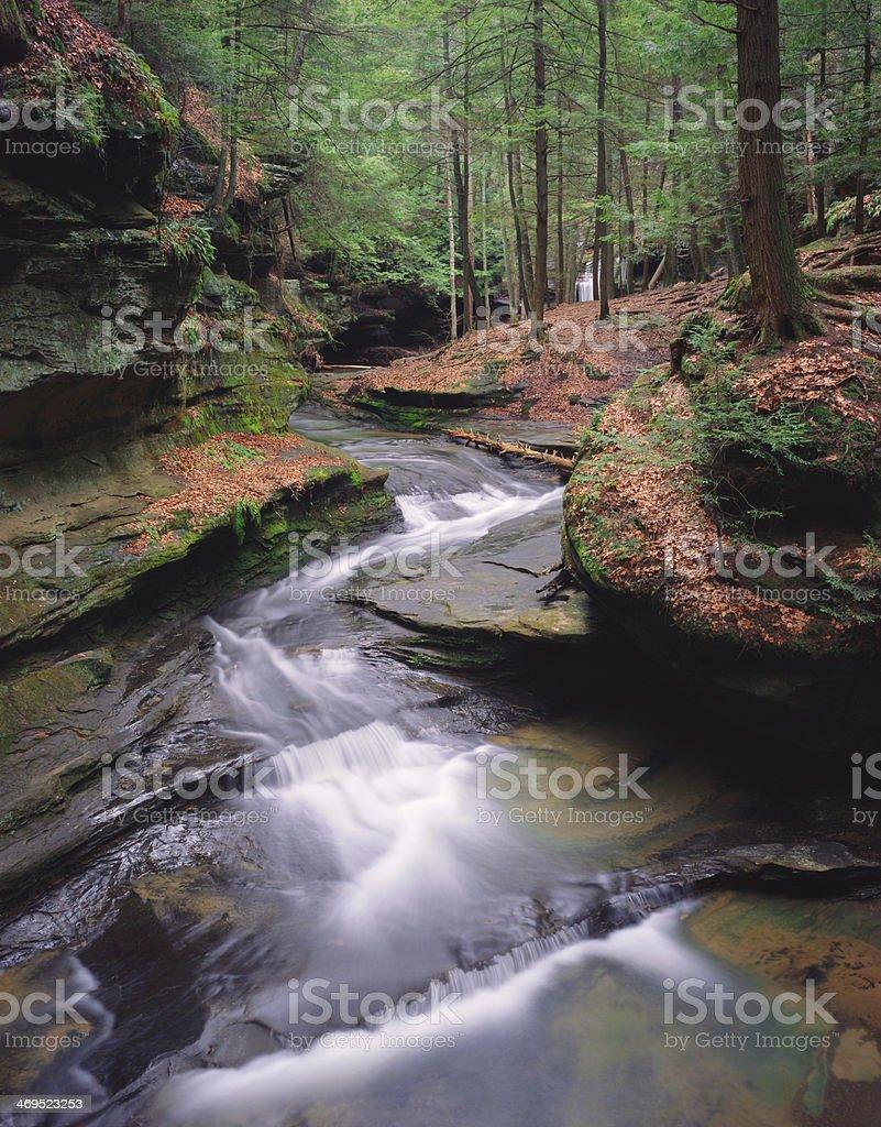 Springtime Stream stock photo
