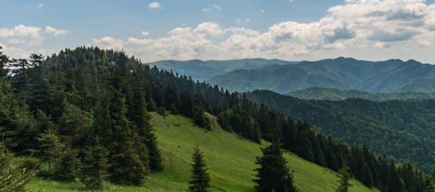 슬로바키아 의 tlsta 언덕에서 봄 벨카 파트라 산맥 - 벨리카 파트라 뉴스 사진 이미지