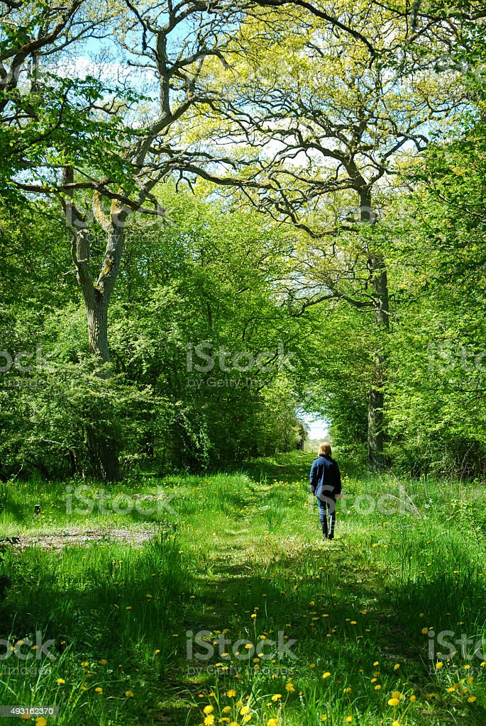 Springtime walk stock photo