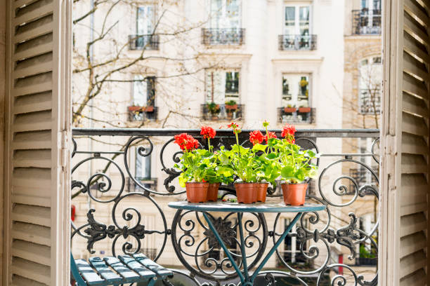 frühling mit roten geranien auf dem balkon paris - paris sommer stock-fotos und bilder