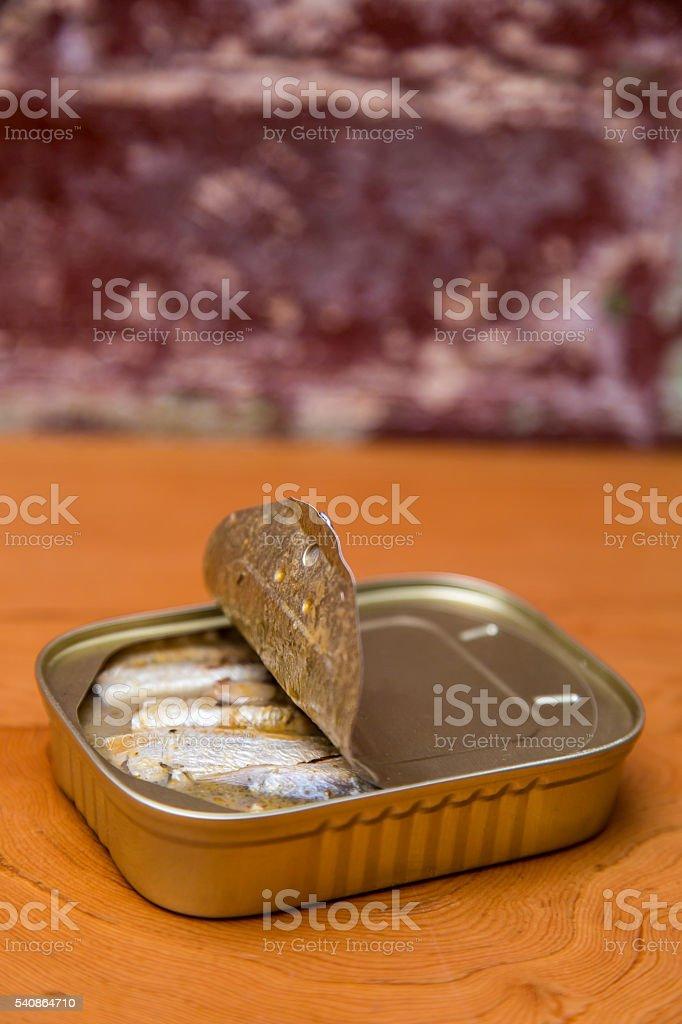Springwater Sardines in a Tin stock photo