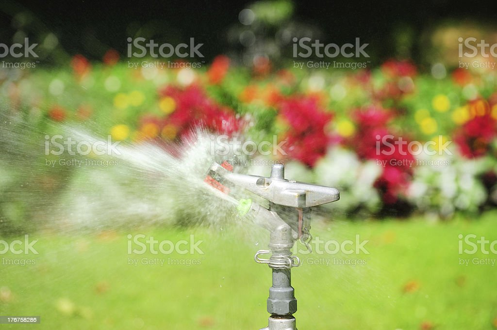 Sprinkler at work, flowers in background royalty-free stock photo