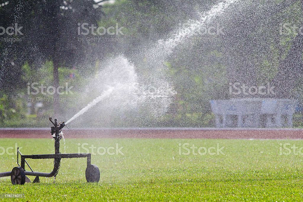 sprinkler head watering the grass royalty-free stock photo