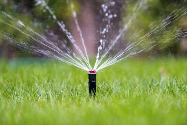sprinkler in action watering grass - watering stock pictures, royalty-free photos & images