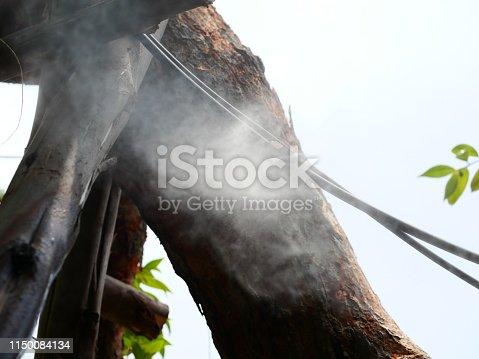 istock Sprinkler in garden watering 1150084134
