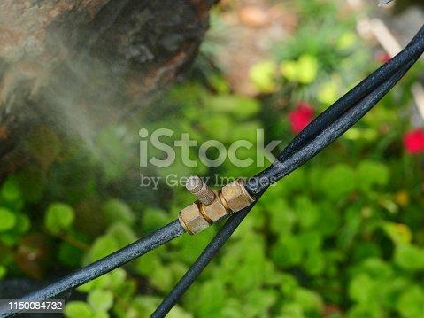 istock Sprinkler in garden watering 1150084732
