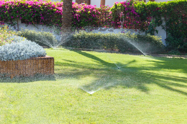 Sprinkler in garden watering the lawn. Automatic watering lawns Sprinkler in garden watering the lawn. Automatic watering lawns. irrigation equipment stock pictures, royalty-free photos & images