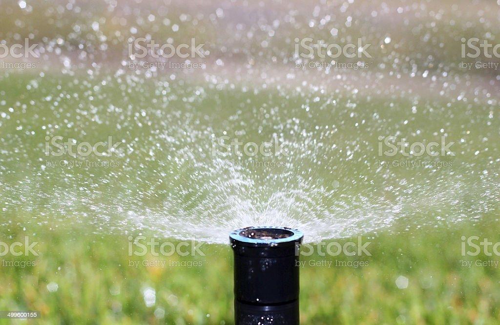 Sprinkler stock photo
