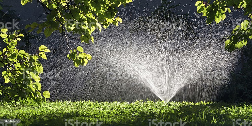 Arroseur automatique asperger d'eau dans le jardin - Photo