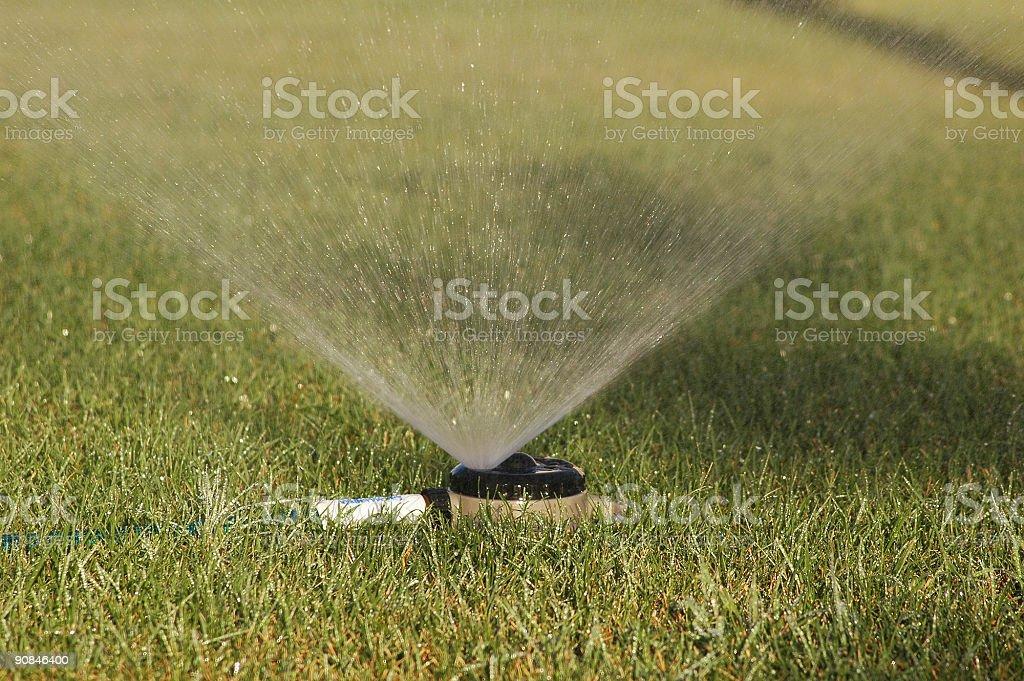 sprinkler system royalty-free stock photo