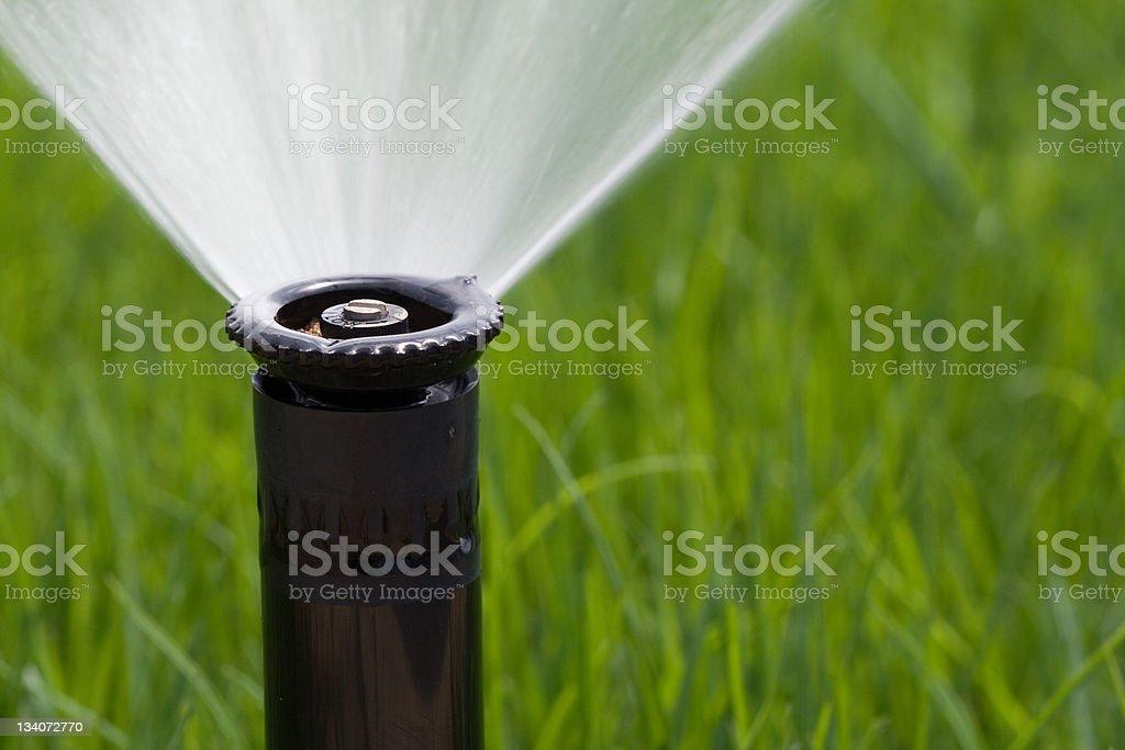 Relva Irrigador de Aspersão - fotografia de stock