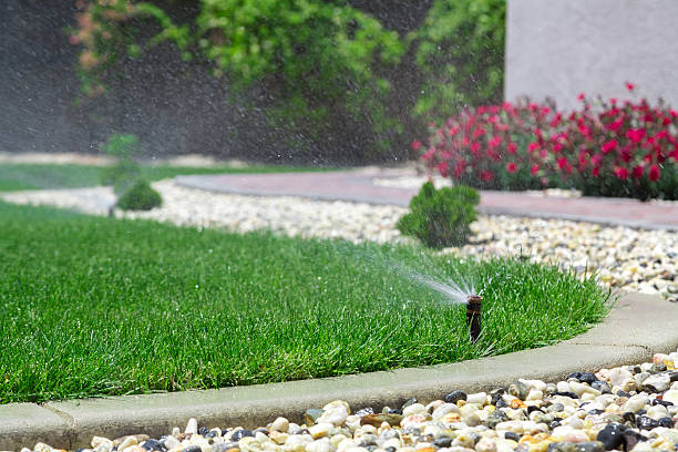 sprinklers - watering stock pictures, royalty-free photos & images