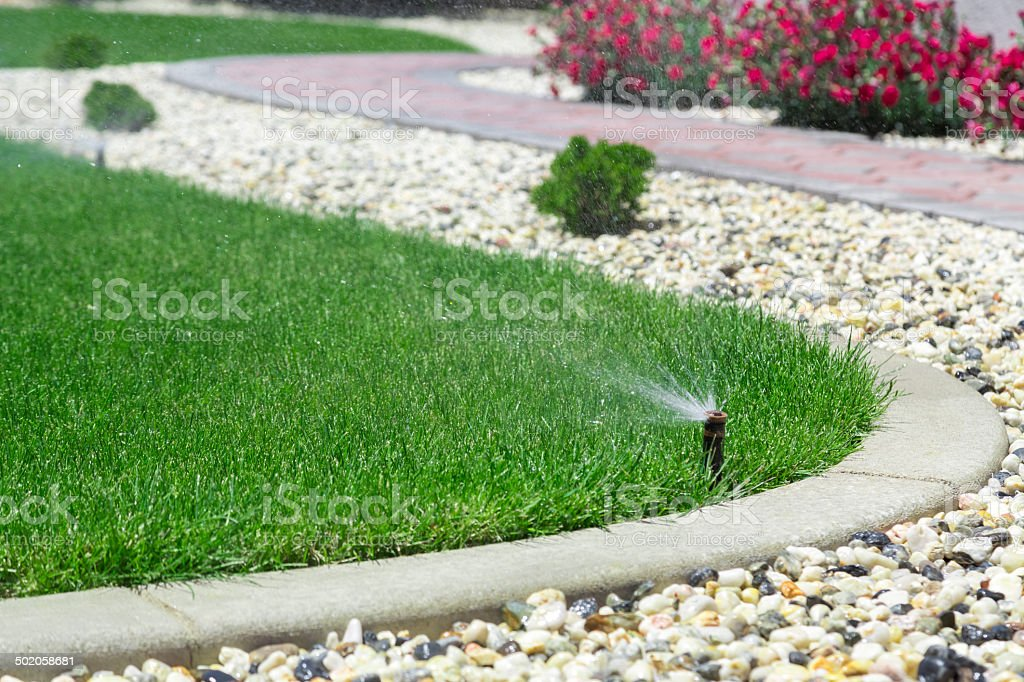 Sprinklers stock photo