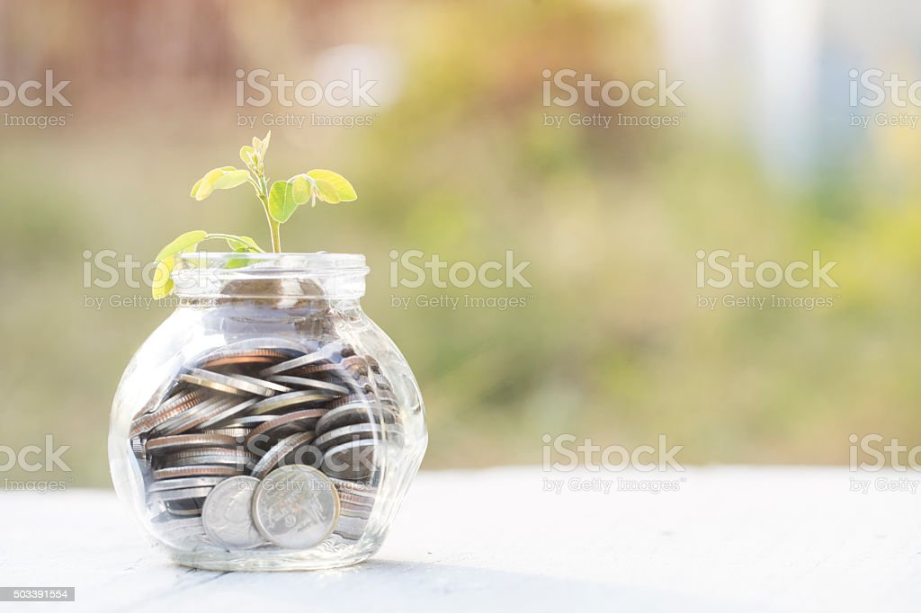 Sprout growing on glass bottle bank stock photo