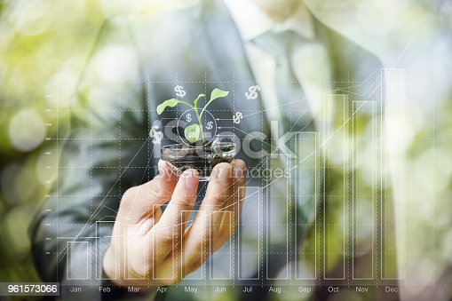 istock Sprout in hand on the background of profit growth. 961573066