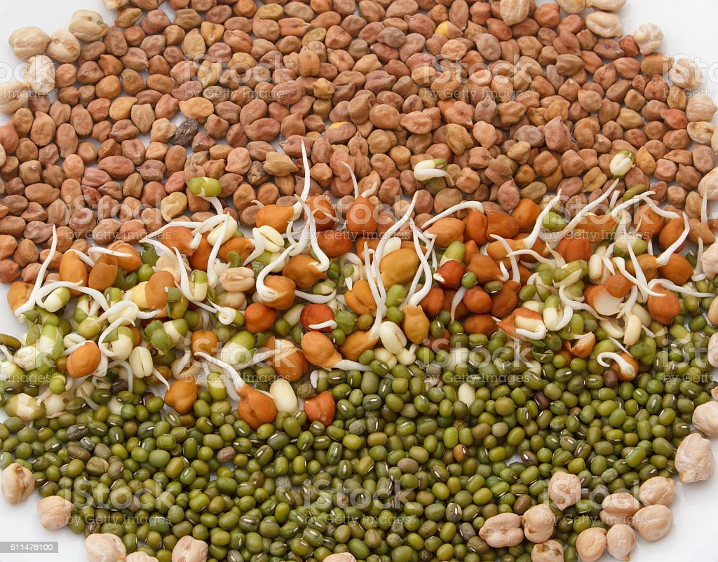 Sprouts , gram,and Lentil stock photo