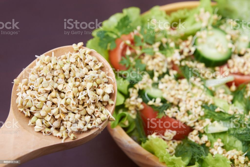 Sprouts. Green buckwheat. Health. Vegetarianism. Salad stock photo