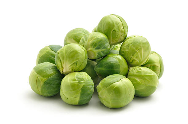Sprouts Fresh Sprouts isolated on a white background. medium group of objects stock pictures, royalty-free photos & images