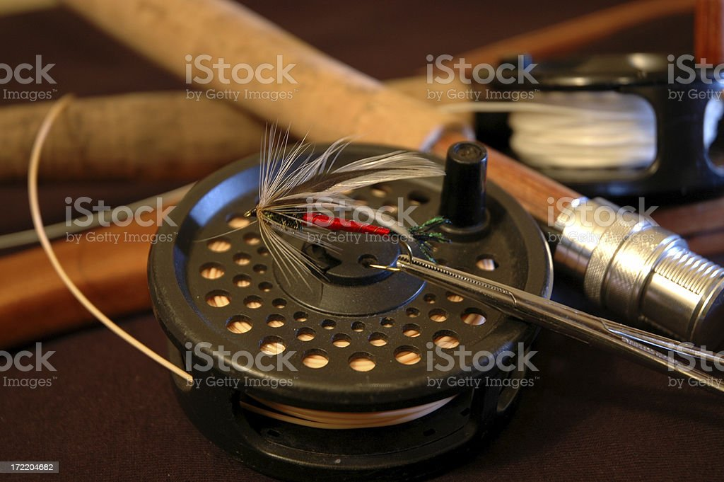 Spruce Streamer royalty-free stock photo